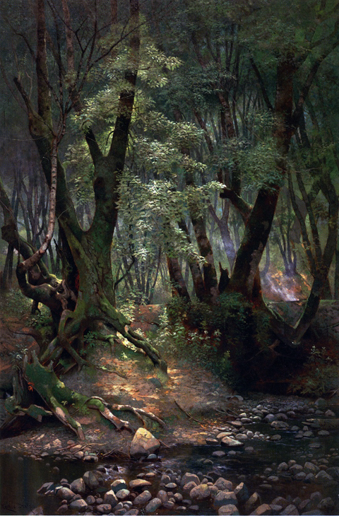 Strawberry Creek Edwin Deakin