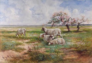 Hugo Anton Fisher Sheep in Spring Meadow