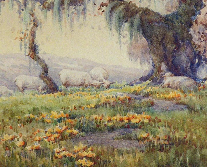 Grace Allison Griffith Grazing Sheep Sonoma 1924 Closeup
