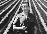 Edward R Murrow Harvest of Shame