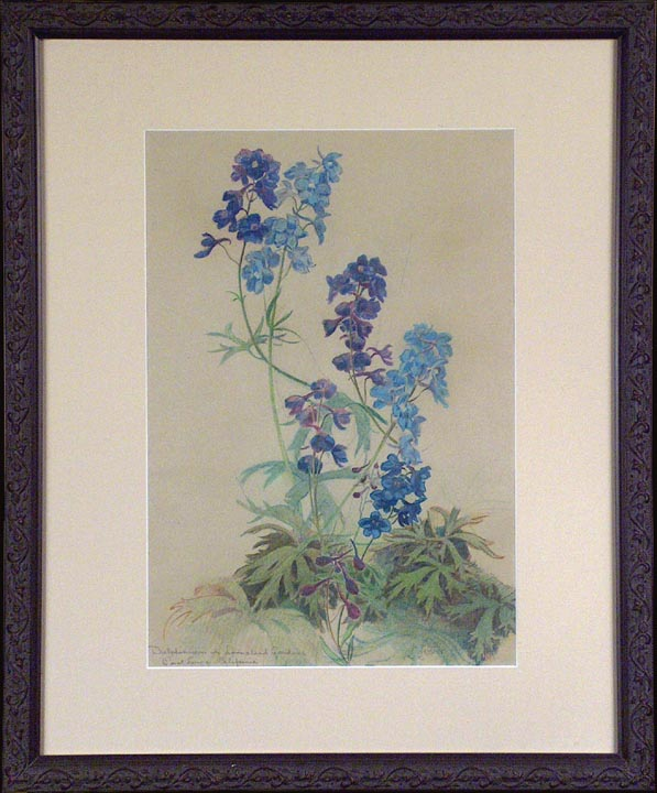 Leonard Lester Delphiniums 2 with Frame