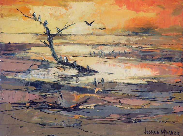 Joshua Meador Estuary Seabirds