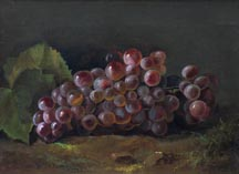 Nellie Moody Grapes Still life Sonoma