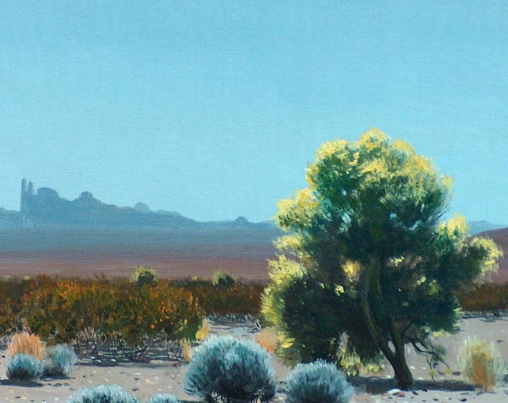 James Guiilford Swinnerton Yuma Desert Closeup