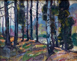 George Gardner Symons New England Forest