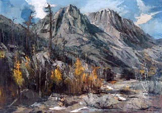 Joshua Meador Sierra Wilds