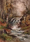Hugo Anton Fisher Landscape Waterfall Thumbnail