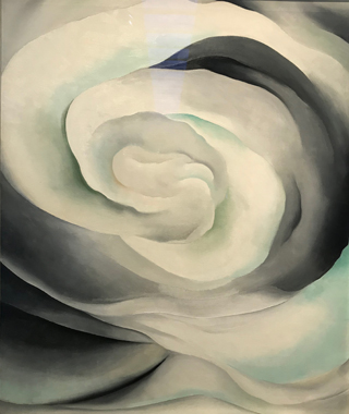 Abstraction, White Rose, 1927 Georgia O'Keeffe