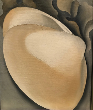 Tan Clam Shell with Seaweed, 1926 Georgia O'Keeffe