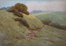 Grace Allison Griffith Pasture Path Midsized Thumbnail