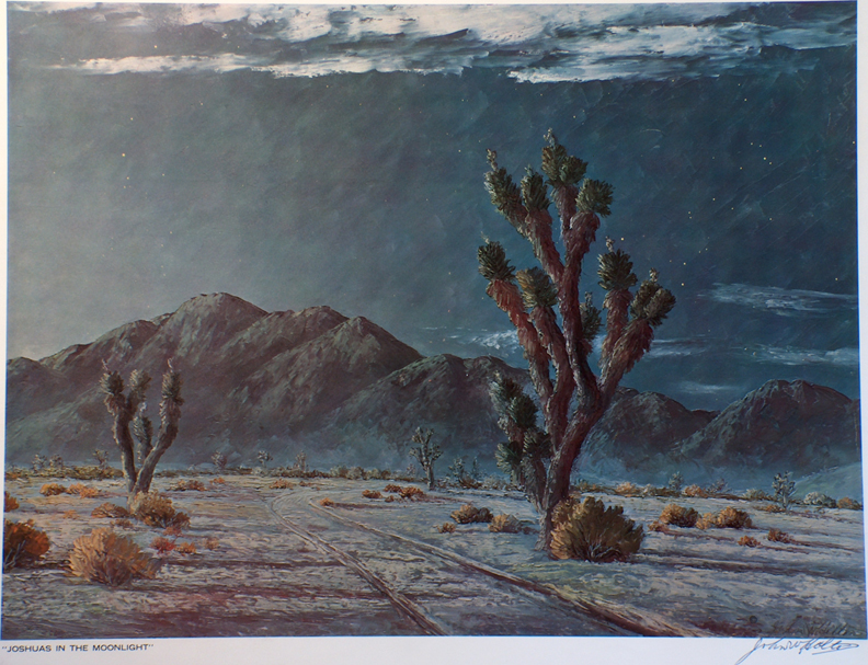 John W Hilton Print Joshuas in the Moonlight