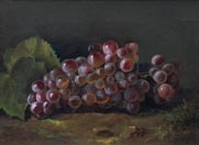 Nellie Moody Sonoma Grapes