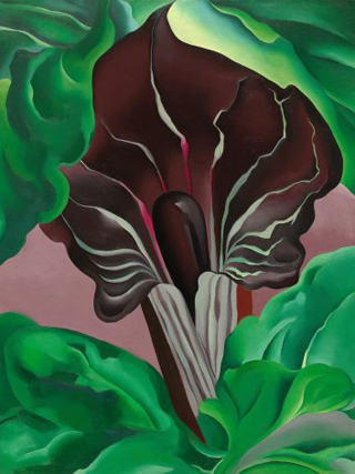 Georgia O'Keeffe Jack in the Pulput