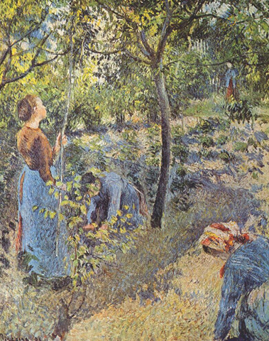 The Apple Harvest 1896