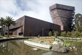 San Francisco's de Young Museum