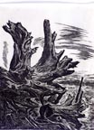 Charles Frederick Surendorf Driftwood Thumbnail
