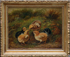 Arthur Fitzwilliam Tait Chicks and Bug Thumbnail