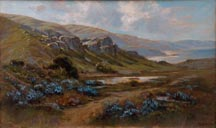 Manuel Valencia Lupines on the Northern Coast Thumbnail