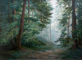 Lydia Vercinsky Redwood Forest Thumbnail