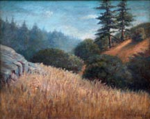 George Arnold Weeden Redwoods on Hillside Midsized Thumbnail